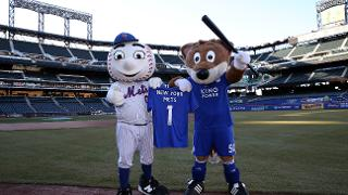 Filbert meets Mr Met in New York